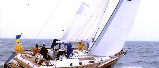 Antares 49